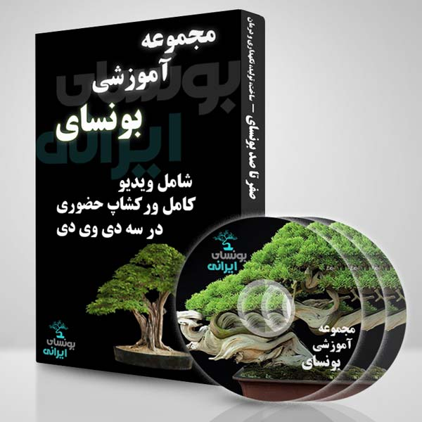 learn bonsai package