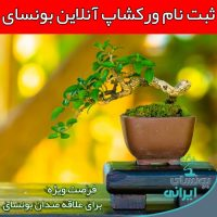 bonsai online workshop